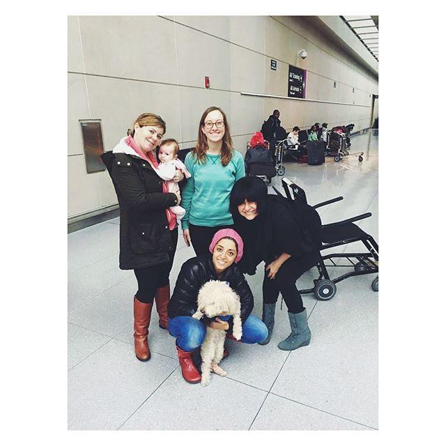 Despite the blizzard, we made it to Boston airport to welcome Odie, an injured dog from @official_vafa_animal_shelter to the US. اودی، سگ مجروحی از سگهای پناهگاه وفا که امروز وارد بوستون شد و قراره بعد از اینکه این توفان و برف تموم شد به خانواده ای در ایالات دلور سپرده بشه.