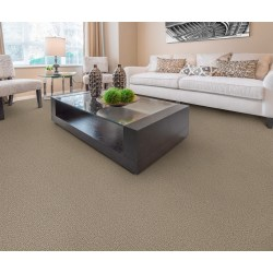Small Crop Of Dixie Home Carpet
