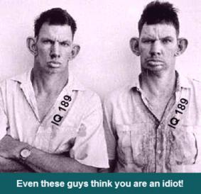 Stupid Twins