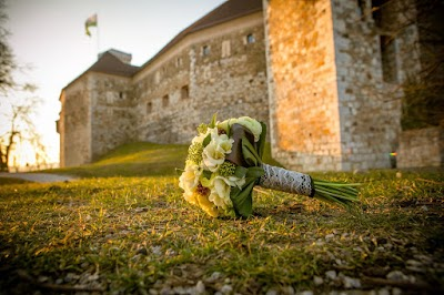 porocni-fotograf-wedding-photographer-poroka-fotografiranje-poroke- slikanje-cena-bled-slovenia-koper-ljubljana-bled-maribor-hochzeit ( (2).jpg