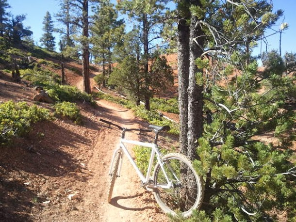 Single Track Trail