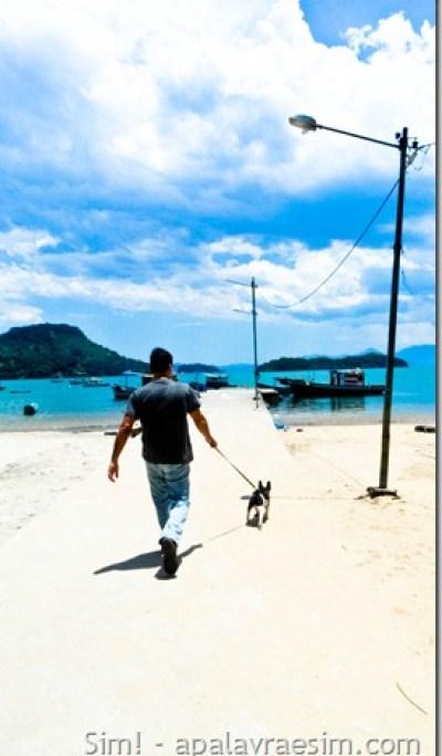 viagem com cachorro pet friendly Paraty rj praia cachoeira restaurantes hotéis aceitam cachorro
