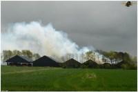 brand franeker 12052012 190.jpg