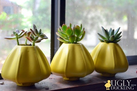 Succulents, flowerpots, and yellow spray paint - oh my!