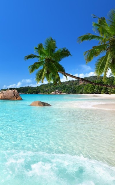 Tropical Beach Live Wallpaper - Android Apps on Google Play