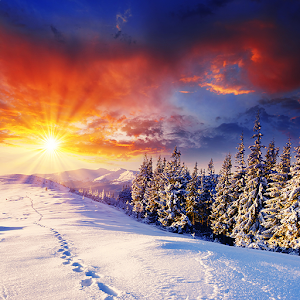 Winter Live Wallpaper HD FREE - Android Apps on Google Play