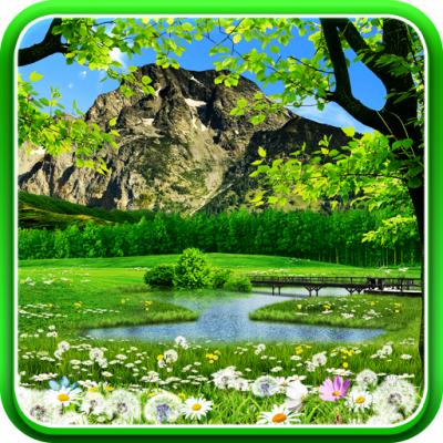 Download Summer Live Wallpaper for PC