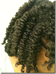 My Summer Do  Braid Out