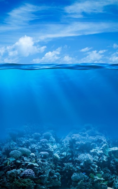 Ocean Live Wallpaper - Android Apps on Google Play