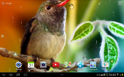Hummingbirds Live Wallpaper - Android Apps on Google Play