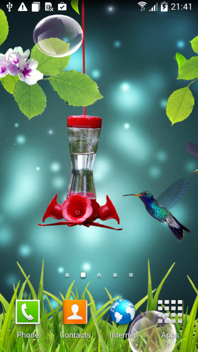 Hummingbirds wallpaper - Android Apps on Google Play