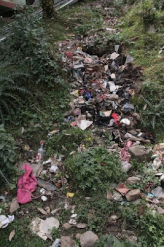 litter problem in Dharamsala, Dharamsala problems
