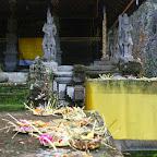 0513_Indonesien_Limberg.JPG