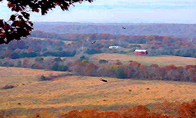 Fall leaves over the valley