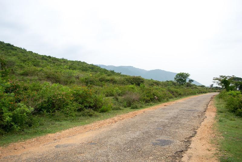 gopalaswamy hills bandipur photos