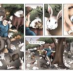 bunnies004.jpg