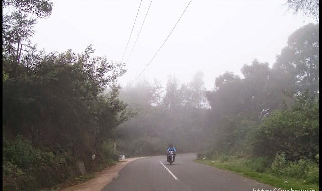 foggy conoor