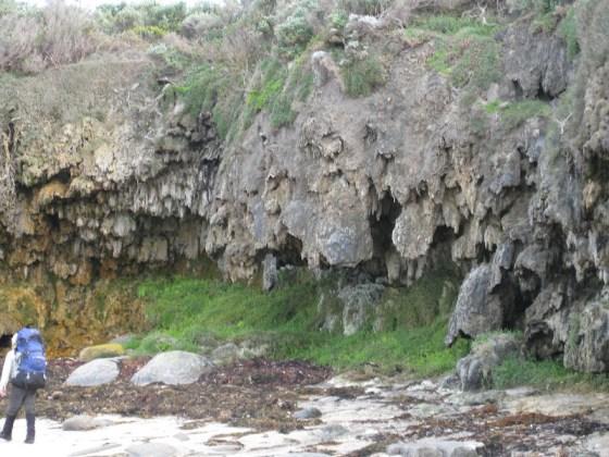 Limestone cliffs at Quarry Bay - Cape to Cape Track