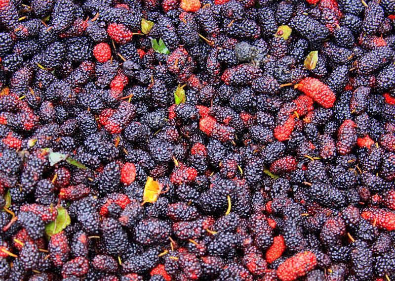 berries on sale at Da Lat market