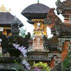 0592_Indonesien_Limberg.JPG
