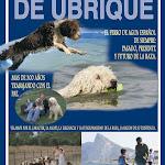 urbique_anuario_ok[1].JPG