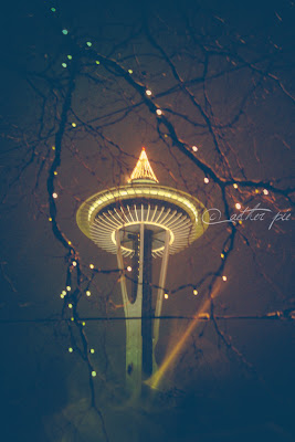 ChristmasNeedle_byAEtherPie