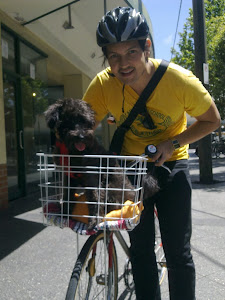 Dogs! On Bikes! In Baskets!