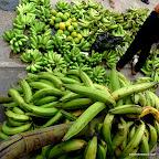 Green mangos, plaintins, small banannas and large banannas