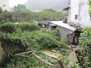 Taipei Greenery