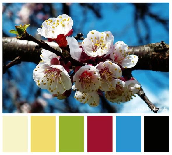 ColourPalette