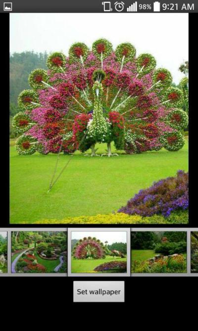 Garden Live HD Wallpapers - Android Apps on Google Play