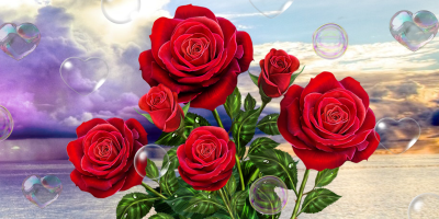 Rose, live wallpaper - Android Apps on Google Play