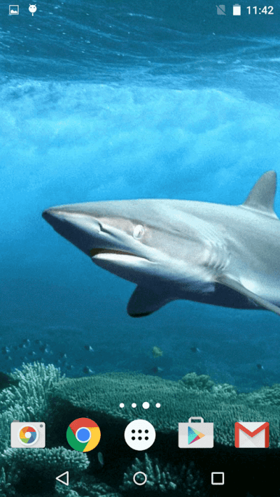 Sharks Live Wallpaper - Android Apps on Google Play