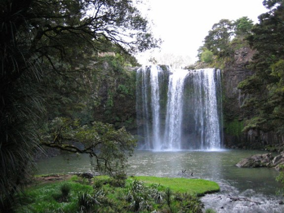Top things to do in Northland: Whangarei falls, Northland