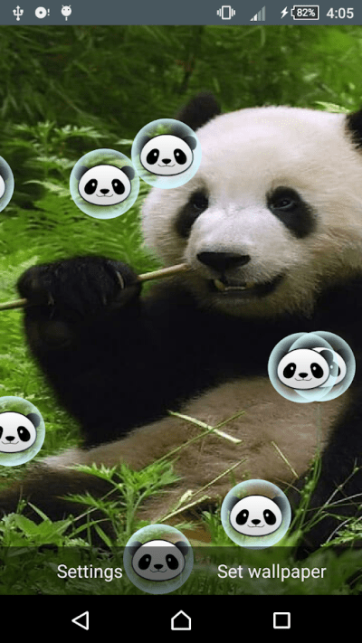 Panda Live Wallpaper - Android Apps on Google Play