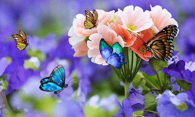3D Butterfly Live Wallpaper - Android Apps on Google Play