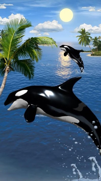 Dolphins live wallpaper - Android Apps on Google Play