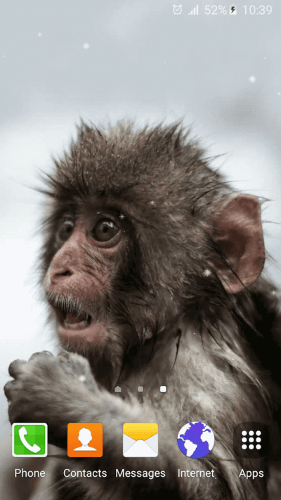 Funny Monkey Live Wallpaper - Android Apps on Google Play