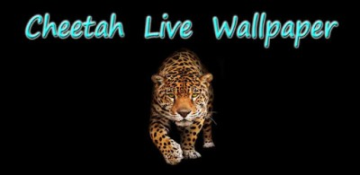 Cheetah Live Wallpaper - Apps on Google Play