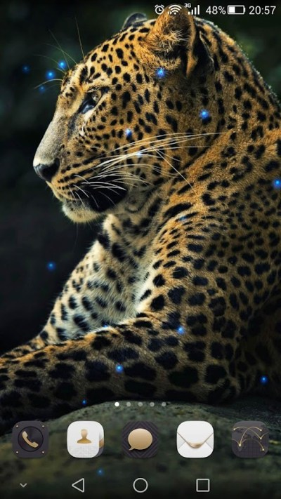 Cheetah Live Wallpaper - Android Apps on Google Play