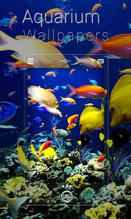 Fish Aquarium Live Wallpapers 1.0.5 Apk, Free Personalization Application - APK4Now