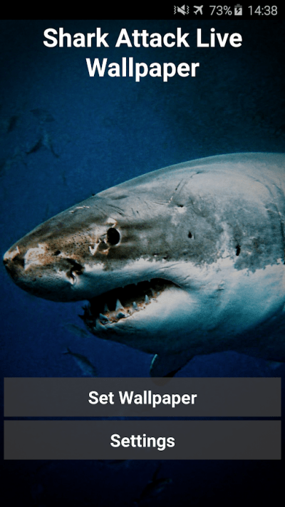 Shark Attack Live Wallpaper - Android Apps on Google Play