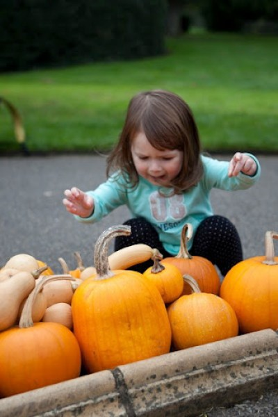 Kew Gardens Pumpkins 4