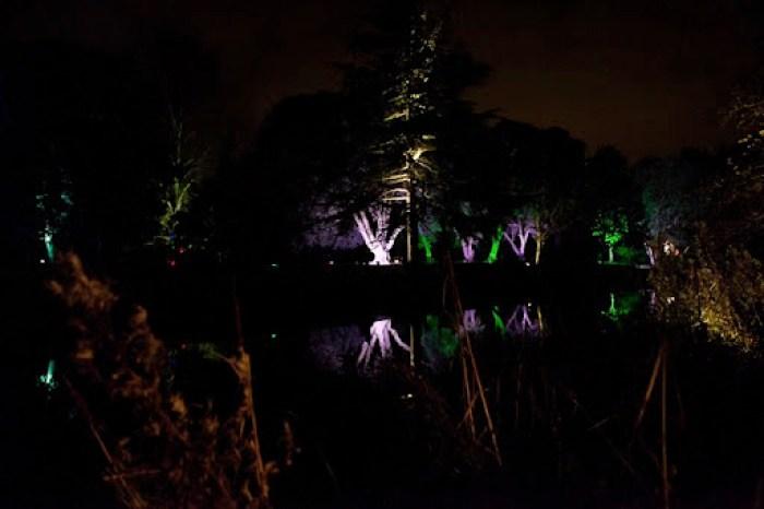 Syon Enchanted Woodland 5