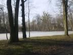 park przypalacowy