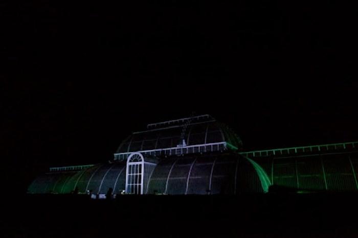Christmas at Kew 50