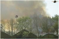 brand franeker 12052012 125.jpg