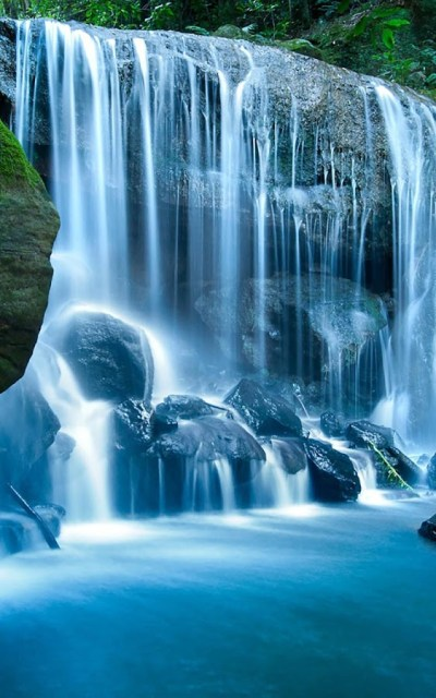 Wild Waterfalls Live Wallpaper - Android Apps on Google Play
