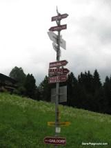 Adventure to Top - Hopfgarten-8.JPG