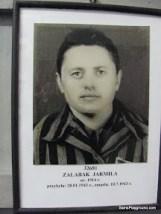 Photographs of Camp Prisoners - Auschwitz-Birkenau-3.JPG